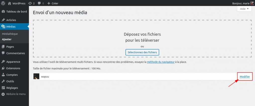 Capture d'écran après l'envoi d'un nouveau média, avec le lien Modifier